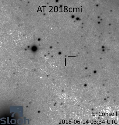 ch'tite nova dans M31 27924405377_d00fb00f03_o