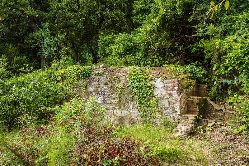 Muro de contención en el camino a Can Valldaura