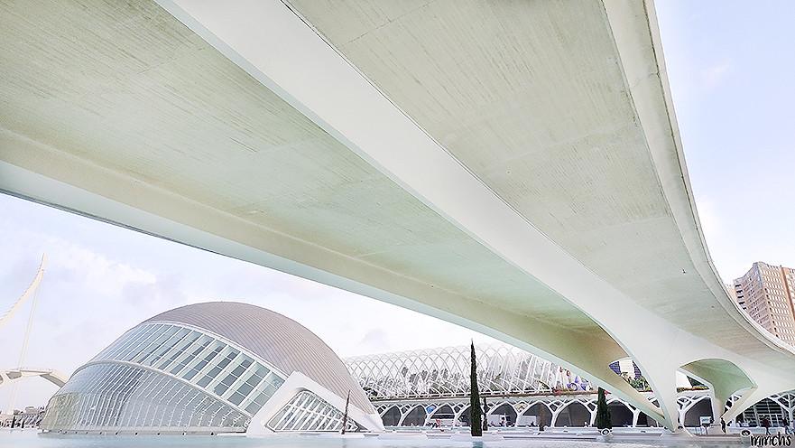 las artes y las ciencias Valencia