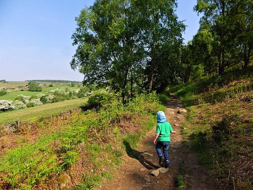 Starting the path to Birchen Edge