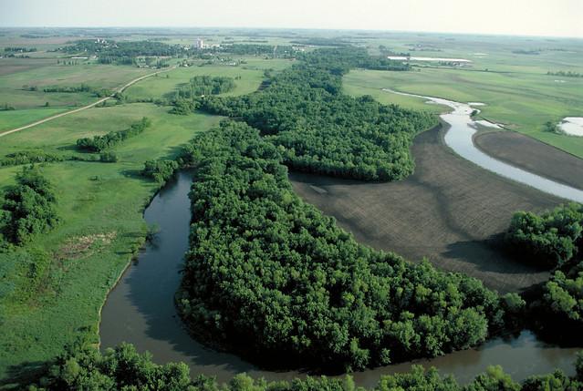 A riparian buffer lining a waterway