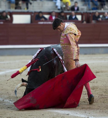 AionSur: Noticias de Sevilla, sus Comarcas y Andalucía 42571474982_fcaf55122c_d Ángel Sánchez: raíces arahalenses que sueñan con la Puerta Grande de Las Ventas Arahal Provincia
