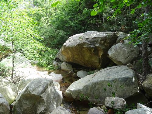 Depuis le chemin RG du Finicione : le ruisseau de Quarciteddu vers l'amont à la traversée