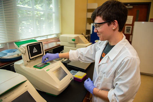 Auburn student Shelby Zikeli works in a lab