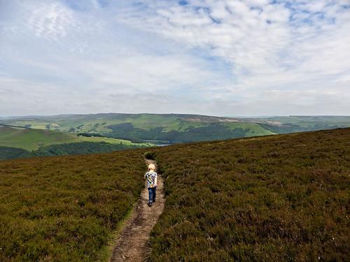 Cutting across moorland