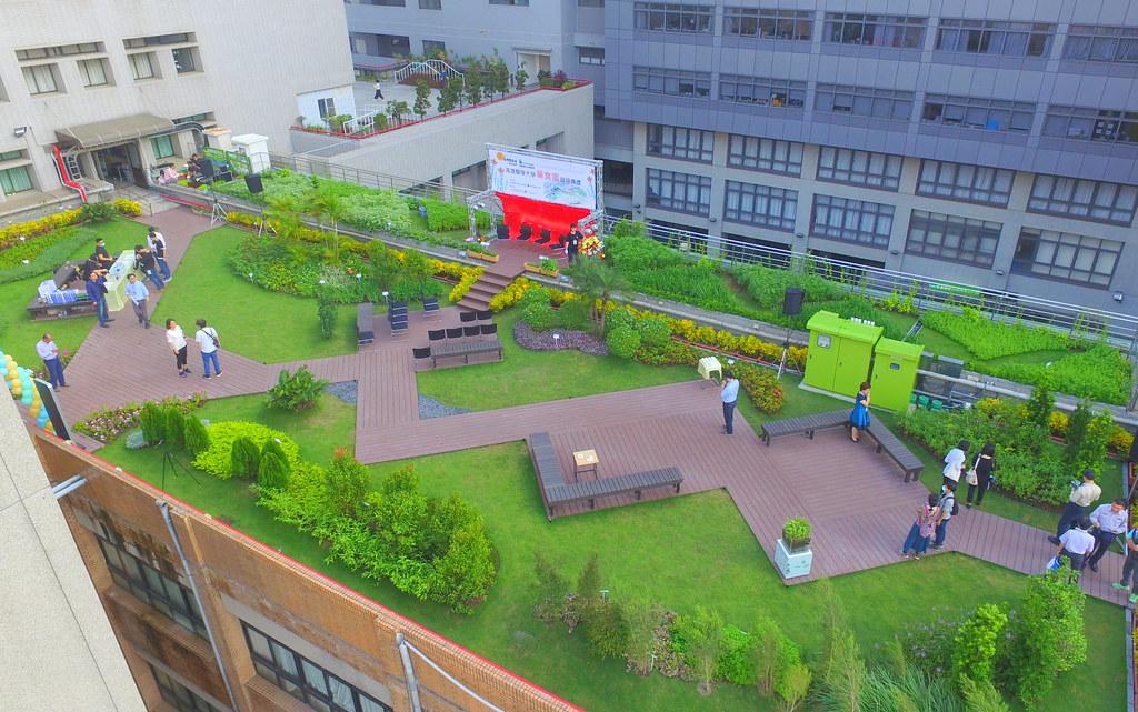 高雄醫學大學綠屋頂。圖片來源:高雄市工務局