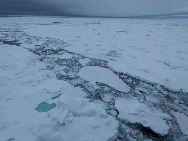 Mar de hielo en Svalbard