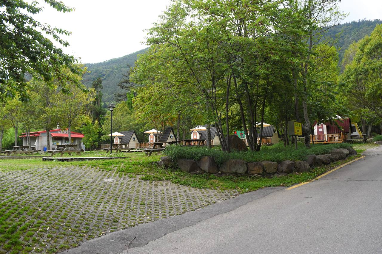 武陵農場 花海區キャンプ場