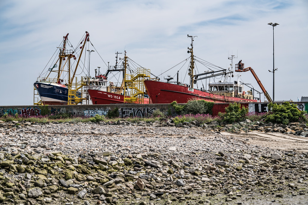AN ACTIVE BOATYARD IN HOWTH 006