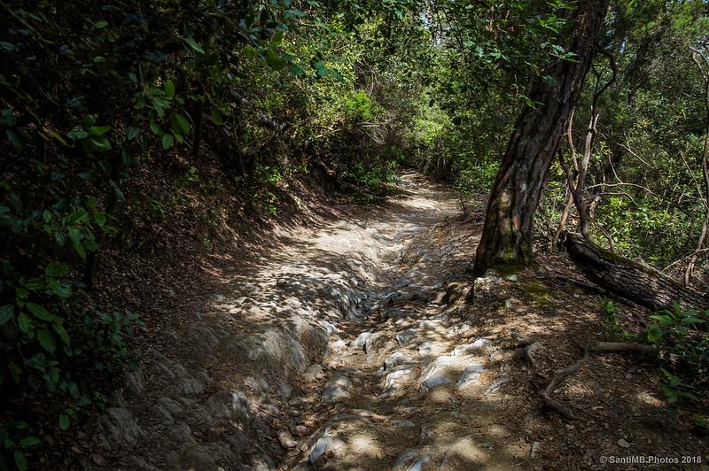 Sendero de la Serra d'en Masriera a Can Coll