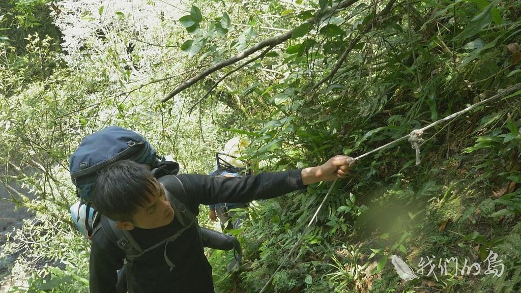 守護森林的重任,手無寸鐵的巡山員排在第一線,追蹤一個個盜伐點。