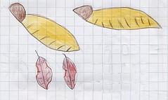 9 dis_vero 10 semi alati e foglie morte
