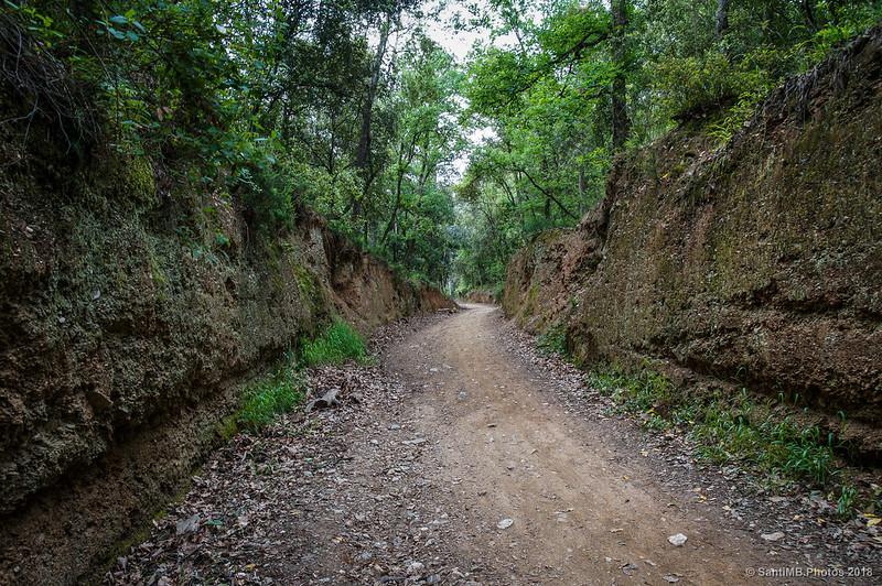 Subiendo hacia la Font dels Caçadors