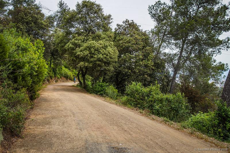 Ciclista por el camino de la Serra d'en Fotjà a la altura del Turó de Can Cerdà