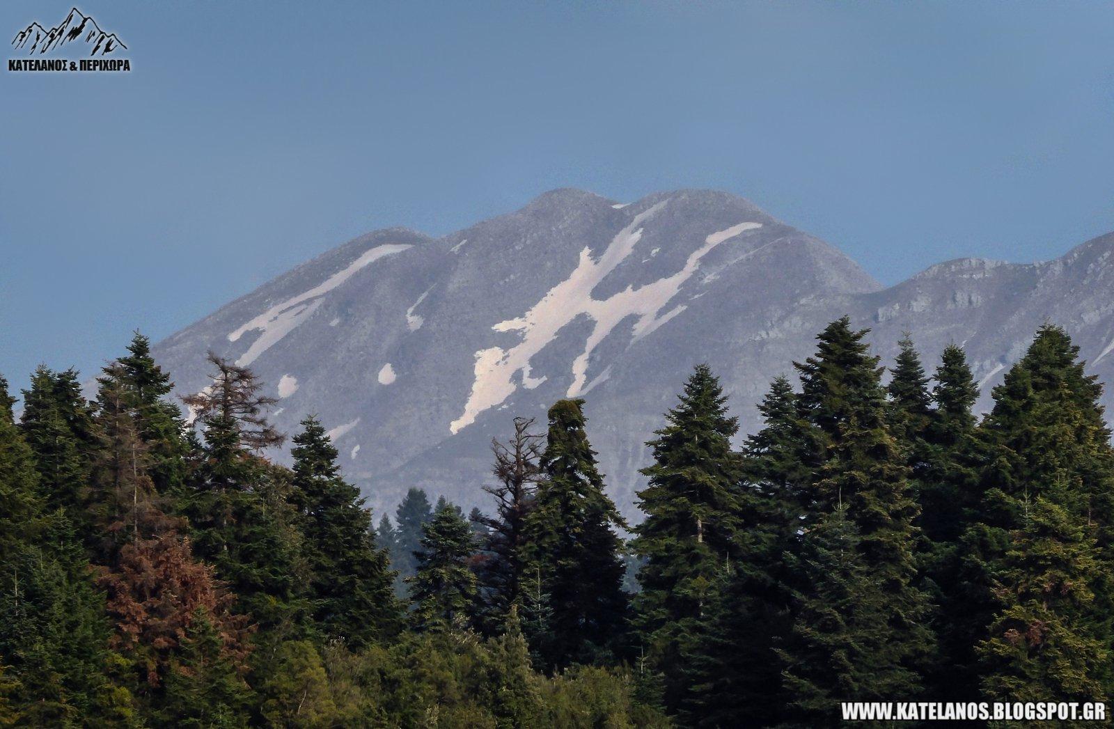 χιονουρες στο βουνο κορυφη τσουμα κοκκινολακου αρτας