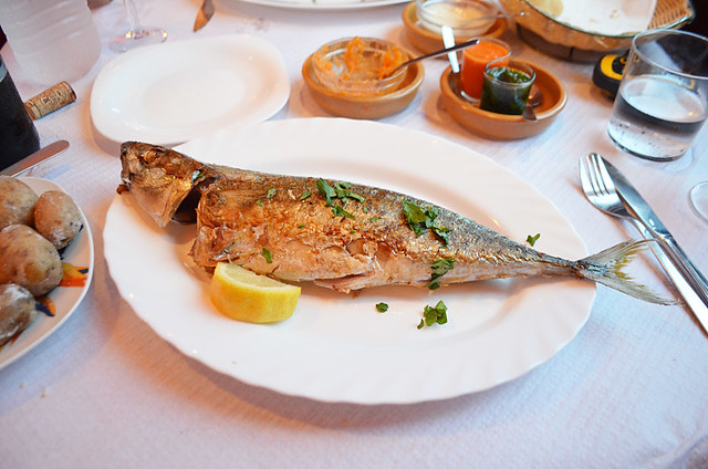 Sea bass, La Gomera