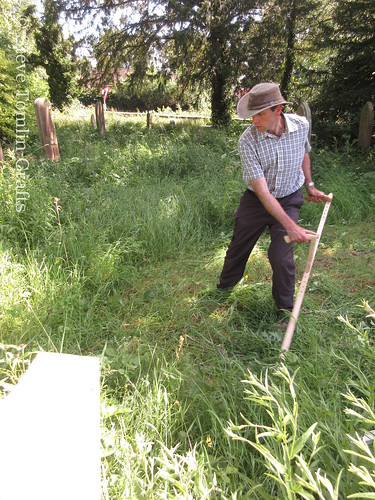 Scything wildflower meadow at St John's Church, Yorkshire