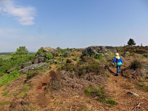 Working his way along Birchen Edge