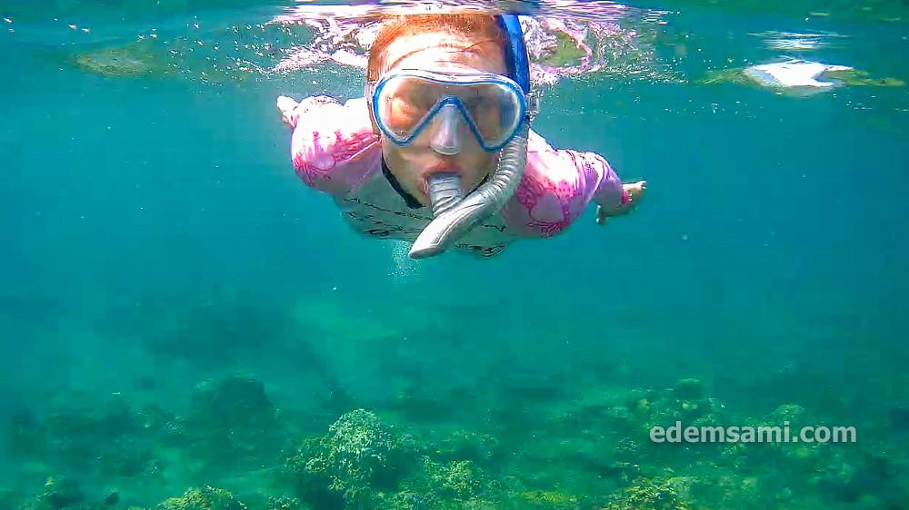 Где поплавать с маской в Амеде