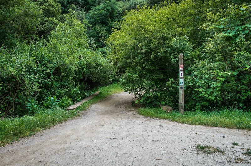 Inicio del camino a Can Cerdà desde Can Coll