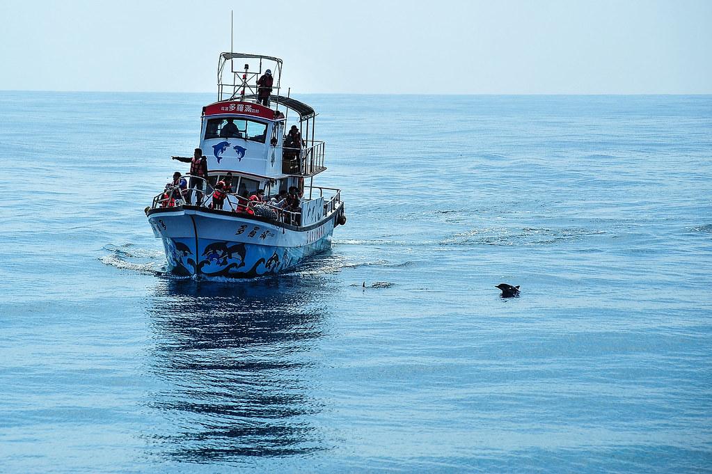 15年前所乘的「多羅滿號」也將在這次航行中擔當重任。圖片來源:黑潮海洋文教基金會。