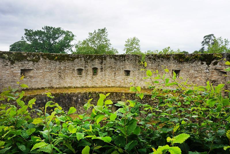 Clisson Castle view