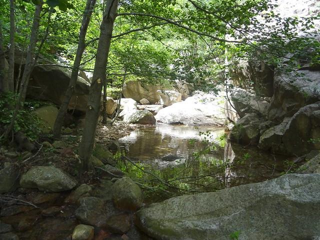 Depuis le chemin RG du Finicione : le ruisseau de Quarciteddu vers l'aval à la traversée