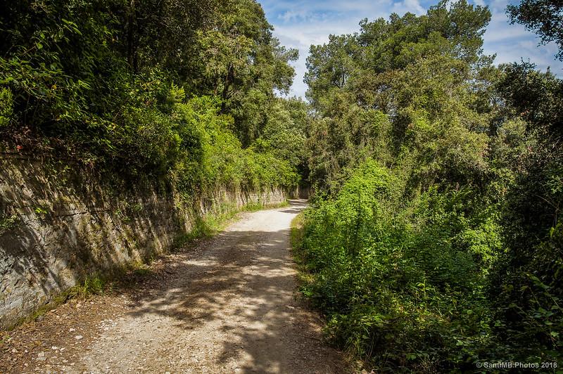 Camino a Can Valldaura