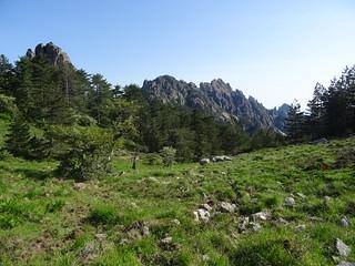 Début de la descente du versant Nord de Bocca di Castellucciu à l'arrivée au col