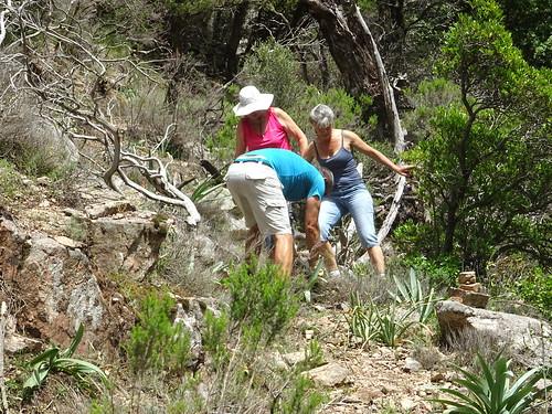 Sur le chemin RG du Finicione : travail des bénévoles à l'arrivée au ruisseau de Quarciteddu