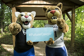 Bart the Cougar and Scooter the Cougar Mascots