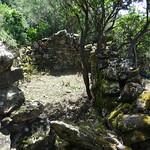 Re-découverte de la bergerie ruinée de Mela