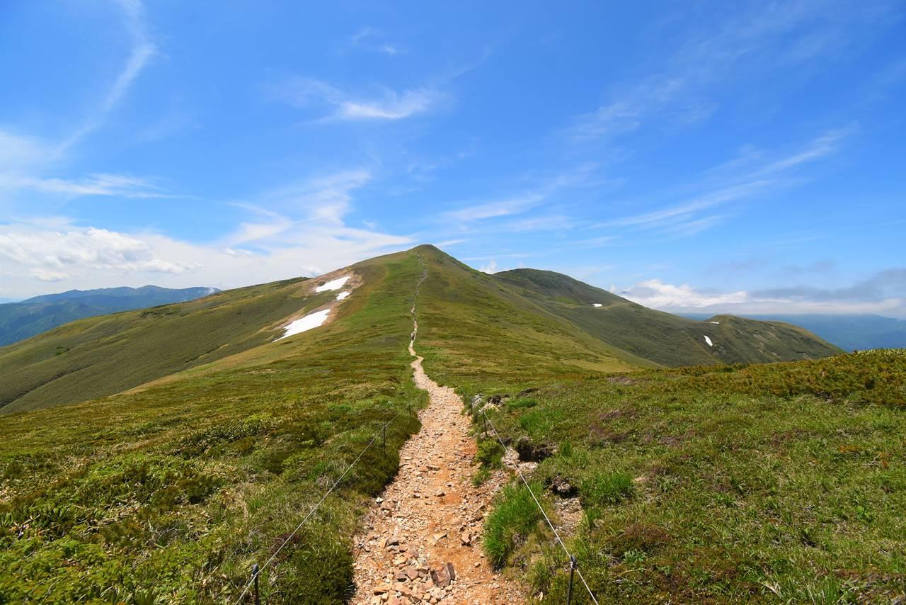 平標山の稜線とお花畑