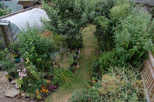 View from an upstairs window