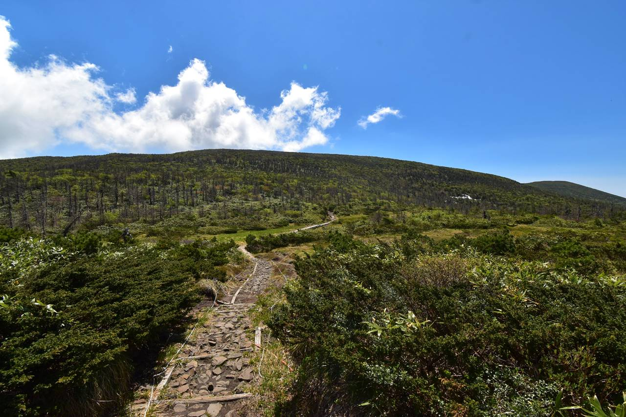 蔵王連峰 芝草平と屏風岳