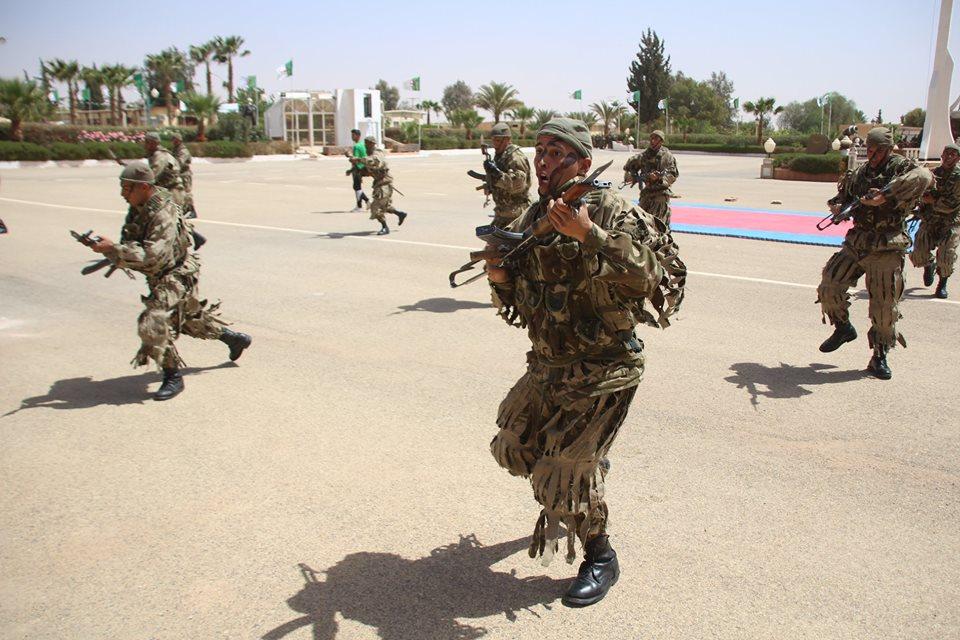 موسوعة الصور الرائعة للقوات الخاصة الجزائرية - صفحة 64 27962707977_9cf0bb467e_o