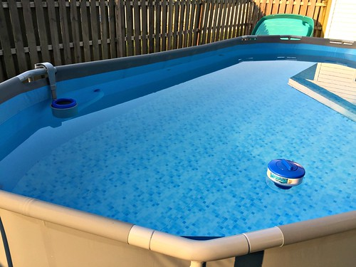 We Bought a Pool    Here Are My Thoughts! - Andrea Dekker