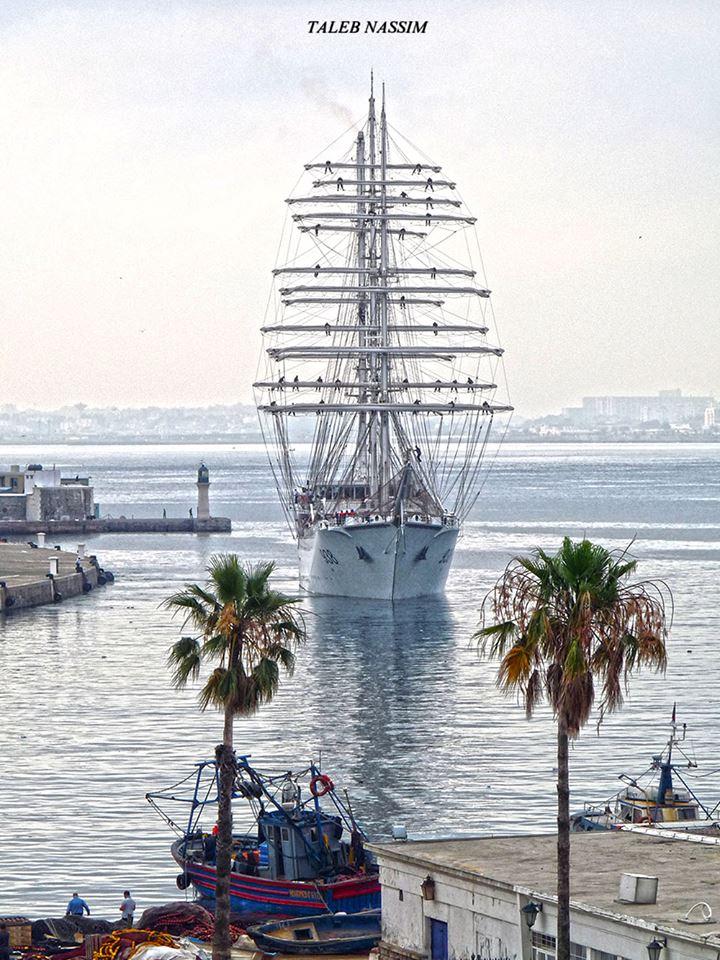 صور السفينة الشراعية الجزائرية  [ الملاح 938 ] - صفحة 11 42461967564_bde440f552_o
