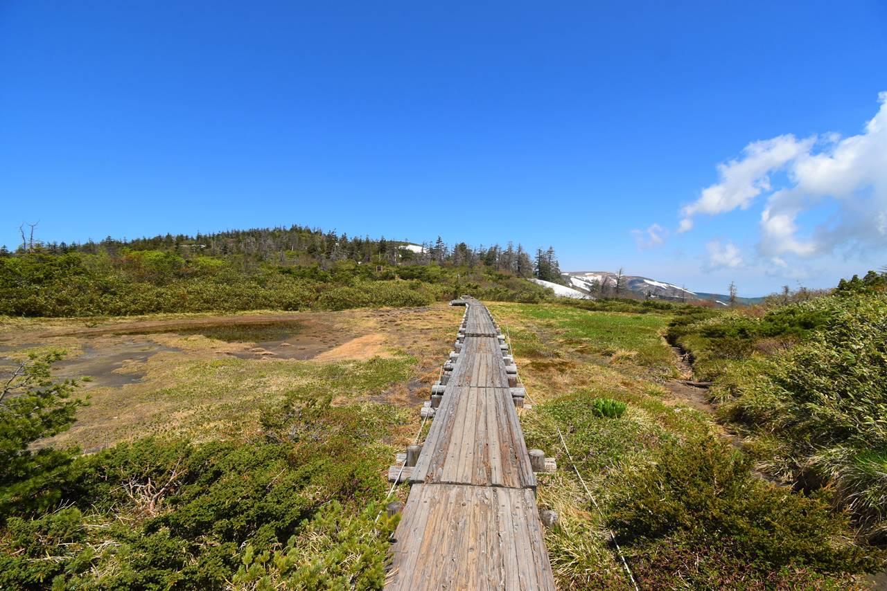 芝草平の湿原と木道路