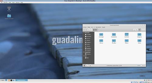 Guadalinex-1