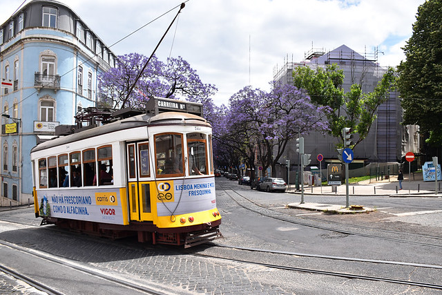 Old tram, Lisbon, Portugal