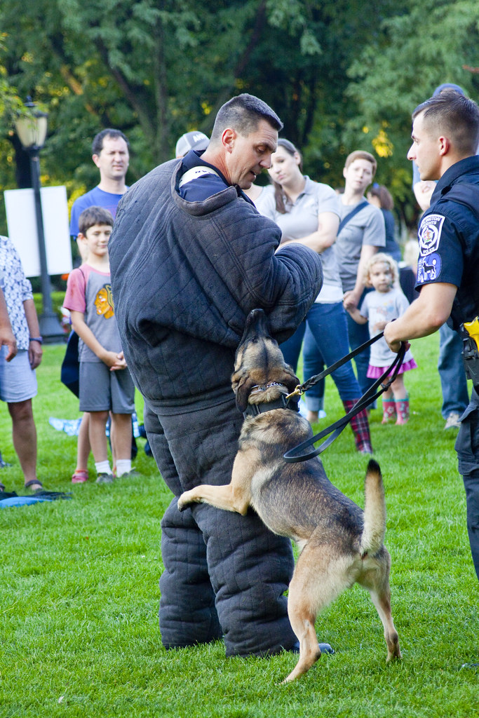 Image Result For National Night Out