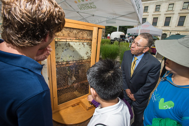 USDA APHIS PPQ Deputy Administrator Osama El-Lissy viewing bees at USDA Farmers Market