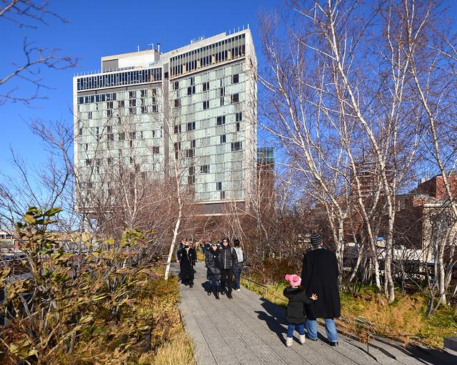 Un paseo por High Line, una de las mejores actividades que hacer en Nueva York