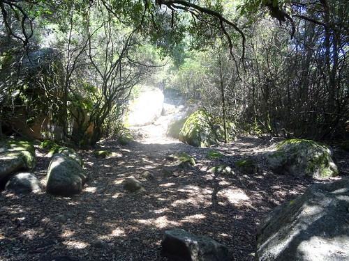 Sur le chemin de descente de l'Uomu di Cagna
