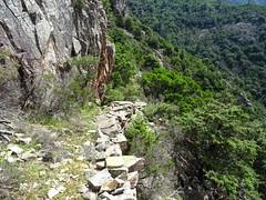 A l'approche du col de la pointe 571 : les beaux soubassements du chemin RD du Finicione