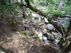 La traversée du Finicione pour rejoindre le chemin RG