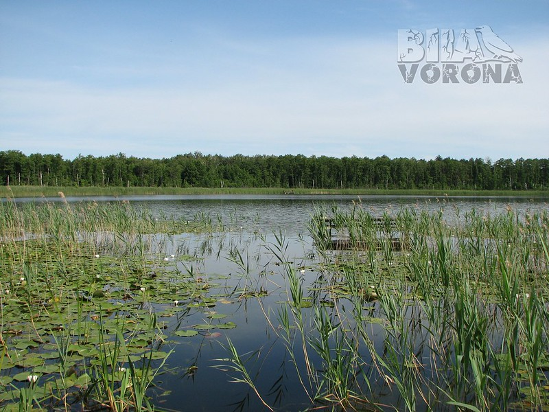Озеро Пересіка