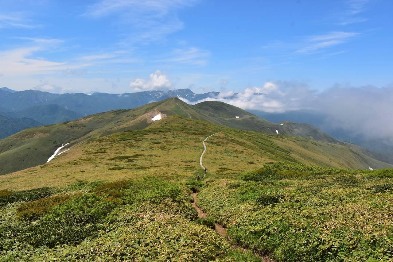 仙ノ倉山から平標山へ