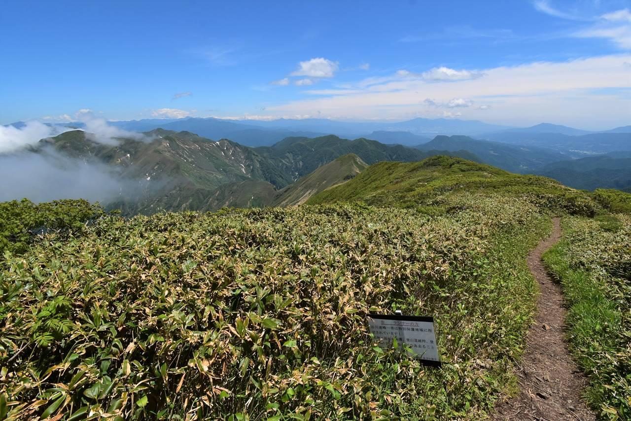 仙ノ倉山から谷川主脈稜線